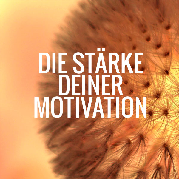 Motivation_Karussell